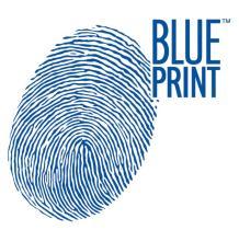 CASCO USADO  Blue Print